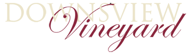 Downsview logo