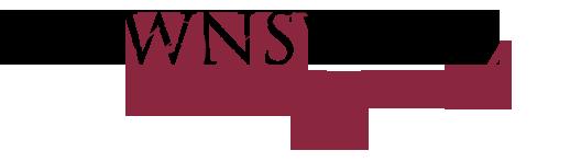 Downsview logo