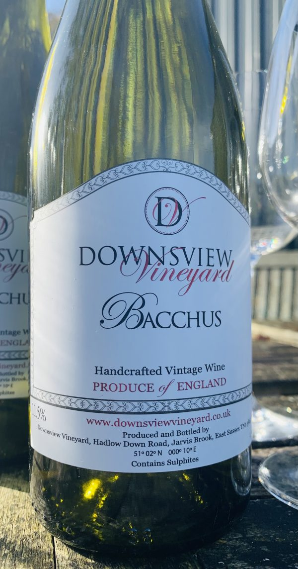 Downsview Vineyard Bacchus