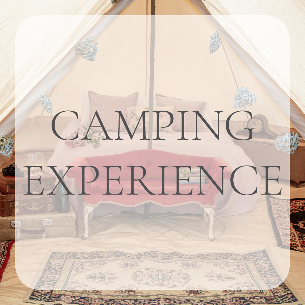 Camping Experiences