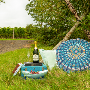 Relaxing Vineyard Get Away
